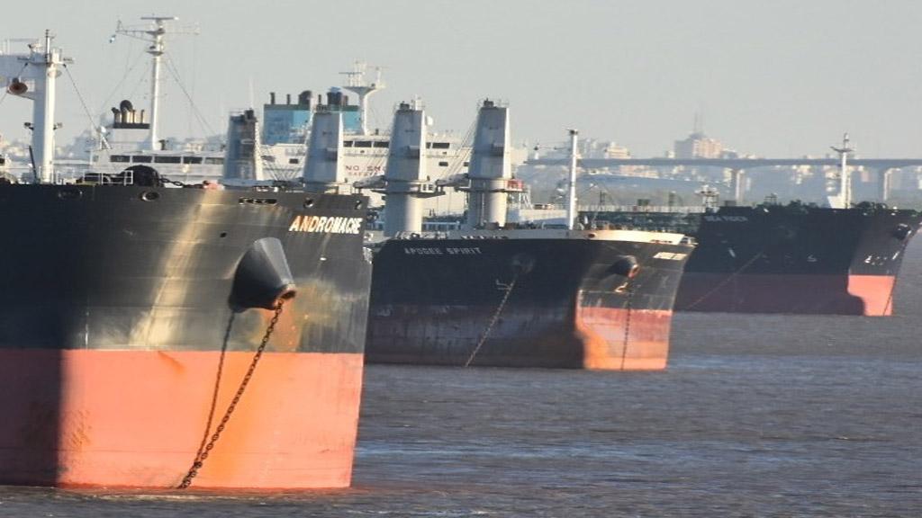 Cayeron en el país los embarques de granos y aumentaron los de aceites