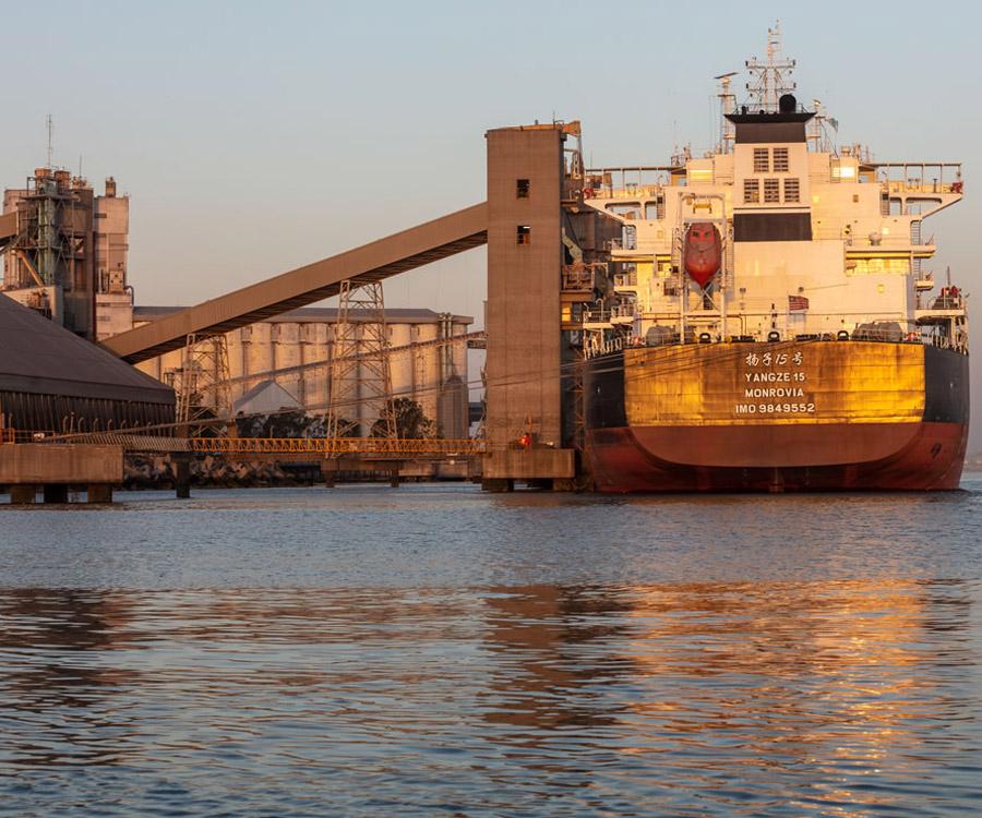 Récord de embarques de granos, con creciente importancia de Bahía Blanca  y Quequén