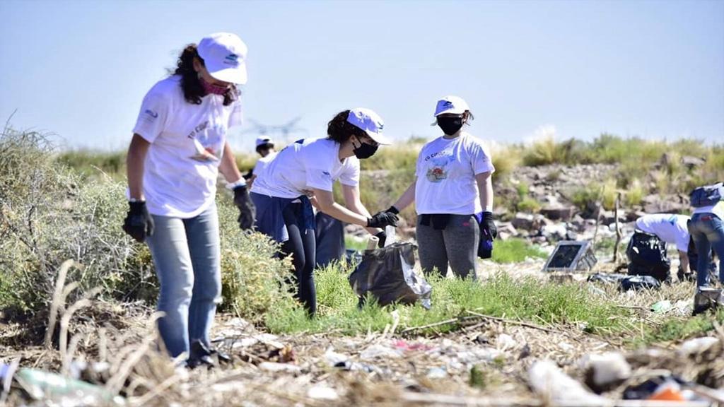 En fotos: tarea medioambiental en un sector costero del puerto de Bahía Blanca
