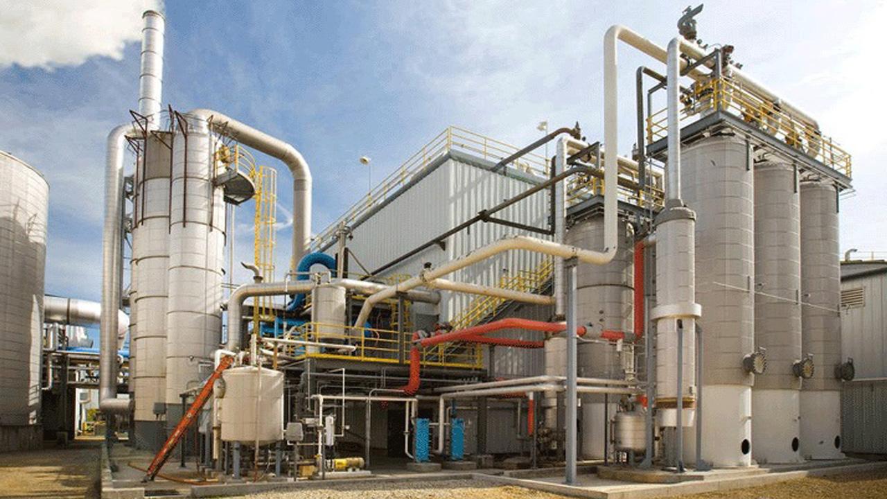 Biocombustibles: qué son y cómo impactan en el ambiente