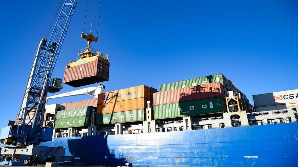 El Puerto de Bahía Blanca supervisó el embarque de mercadería peligrosa